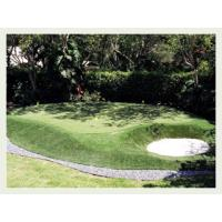 Wholesale Natural golf artificial turf , decorative artificial grass for sports from china suppliers