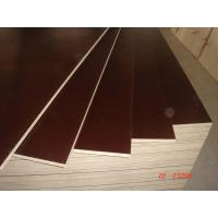 Wholesale 12mm / 15mm / 18mm thickness Film Faced  Plywood from china suppliers