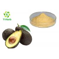 Wholesale Avocado Powdered Fruit Juice Concentrate Avocado Seed Leaf Extract Capsules Powder from china suppliers