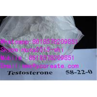 Wholesale 99%Min Purity white crystalline Steroids  Testosterones Base / 58-22-0 for Bodybuilding from china suppliers