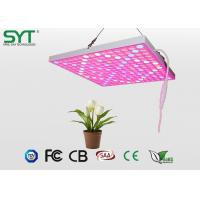 Wholesale High Power Vegetable Led Grow Lights , Hydroponics Led Grow Lights For Plant Growth from china suppliers