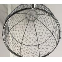 Buy cheap Hot dipped galvanized wire oyster basket,galvanized wire clam basket,factory price from wholesalers