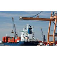 Wholesale Cheap Shipping rates international freight forwarders to amsterdam from china suppliers