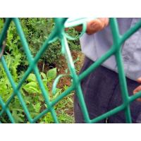 Buy cheap Green steel Wire Mesh Fence from wholesalers