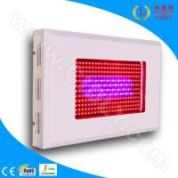 Wholesale Dua-Band 300W LED Grow Light from china suppliers