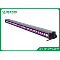 Wholesale Indoor Garden 36x3w Full Spectrum Supplemental Led Grow Lights For Flowering from china suppliers