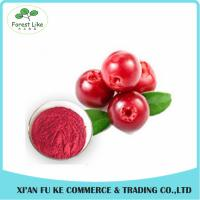 Wholesale Food Ingredients Fruit Extract 100% Natural Bilberry Extract Powder from china suppliers