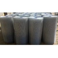 Quality Galvaized/PVC Coated Welded Wire Mesh 1Inch*1Inch;2Inch*2Inch(Factory) for sale