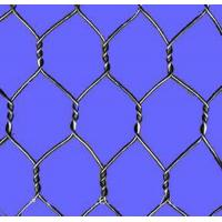 Wholesale Chicken / Poultry Hexagonal Wire Mesh With 1/2 Inch Galvanized Wire Netting from china suppliers