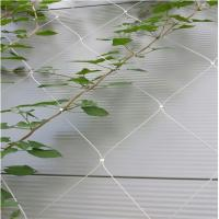 Wholesale Stainless Steel Wire Rope Mesh Net As Architecture Plant Trellis from china suppliers