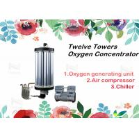 Wholesale Twelve Towers PSA Oxygen Concentrator Parts Gas Equipments Type Repair 3 - 15L from china suppliers