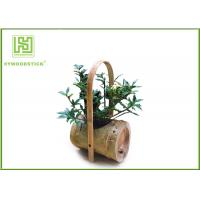 Wholesale Attractive Indoor Bamboo Flower Pots For Various Succulents Plants from china suppliers