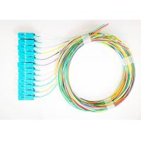 Wholesale SC UPC 12 Fiber Bunchy Pigtail With 12 Couplers For ODF FTTH Equipment from china suppliers