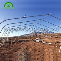 Wholesale 2019 Agricultural hot galvanized steel pipe singe-tunnel greenhouse with plastic film for sale from china suppliers