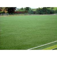 Wholesale Natural 60mm Artificial Football Turf , Fibrillated grass , custom from china suppliers