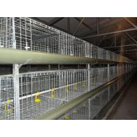 Buy cheap H Type Cages for Growing Broilers from wholesalers