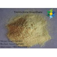 Wholesale Natural Safe Trenbolone Powder Anabolic Legal Steroids For Muscle Building from china suppliers