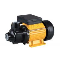 Wholesale 1.5HP  Domestic Electric Motor Water Pump with Max Pressure 10 Bar Suction Head from china suppliers