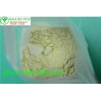 Wholesale Slightly Yellow Trenbolong Powder Trienolone Trenbolone Base For Bodybuilding from china suppliers