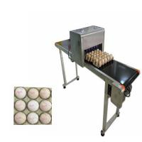 Wholesale Egg Printing Machine For Spherical / Egg Jet Printer Machine Low Cost Of Consumption from china suppliers