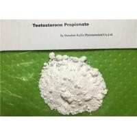 Wholesale White Testosterone Propionate Cutting Cycle Steroids Powder For Muscle Building from china suppliers