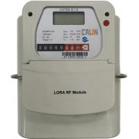 Wholesale G1.6 / G 2.5 / G4 Lora Prepaid And Postpaid Gas Meter , CA768 Prepayment Gas Meter STS from china suppliers