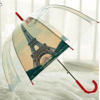 Wholesale Fashion pvc transparent sex beautiful girl picture umbrella from china suppliers