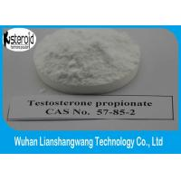 Wholesale CAS 57-85-2 Testosterone Anabolic Steroid Powder Test Propionate Male Enhancement Supplement from china suppliers