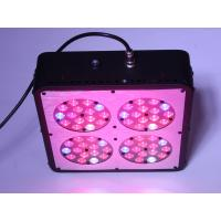 Wholesale diy led grow light kits from china suppliers