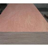 Wholesale 9mm Binangor Plywood from china suppliers