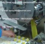 Shomi Machine