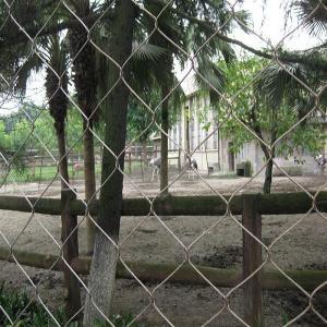 Wholesale Inox Bird Netting from china suppliers