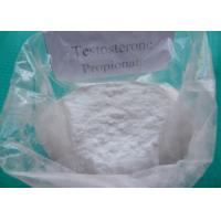 Quality Oral / Injectable Steroid Compound Raw Testosterone Powder Propionate CAS 57-85-2 for sale