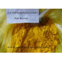 Wholesale 51-28-5 Legal Anabolic Steroids / Weight Loss Steroids DNP 2 4-Dinitrophenol USP from china suppliers