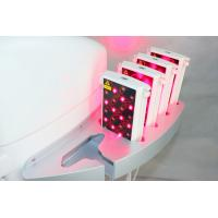 Wholesale Non Surgical Lipo Laser Slimming Machine With 6/8/10/12/14/16 Paddles from china suppliers