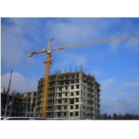 Wholesale Simple In Structure Cantilever potain tower lifting cranes components specification from china suppliers
