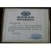 Dongguan Vision Plastic & Metal Products Ltd. Certifications