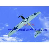 Wholesale SPEEDY glider airplane model from china suppliers