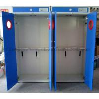 Wholesale Steel Storage Gas Cabinets / Two Gas Cylinder Cabinet / Compressed Gas Cylinder Supply from china suppliers