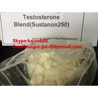 Wholesale Muscle Testosterone Blend Anabolic Steroid Hormones Sustanon 250  Testosterone Sustanon from china suppliers