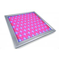 Wholesale Alluminum Waterproof LED Grow Lights For Vegetables , Indoor Grow Room LED Lights from china suppliers