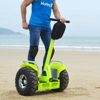 Wholesale 21 Inch Brushless Self Balancing Scooters Double Battery System Lithium Battery Electric Scooter from china suppliers
