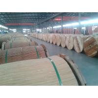 Wholesale Long Life Aluminium Conductor Steel Reinforced Cable With Longer Spans from china suppliers