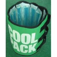 Wholesale Can Cooler Red Wine Cooler Beer Cooler Bottle Cooler Ice Pack Cool Pack (HC25) from china suppliers