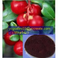 Wholesale Cranberry P.E. from china suppliers