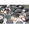 Buy cheap Premium quality coal briquettes from wholesalers