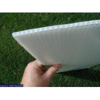Wholesale PP Corrugated Board (WXB335) from china suppliers