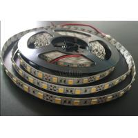 Wholesale 20 Lumen RGB 5050 SMD Led Strip Light , Indoor Flexible 5m Led Strip Light from china suppliers