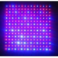 Wholesale 120 watt  / 300w / 600w Hydroponic LED Grow Lights high intensity  for Flower Exhibition from china suppliers