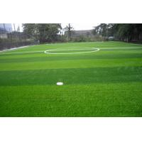 Wholesale 40mm Facilities Sports Artificial Grass , UV Resistance Synthetic Sports Turf from china suppliers